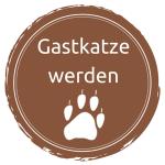 Katzenblog_Gastkatze_werden