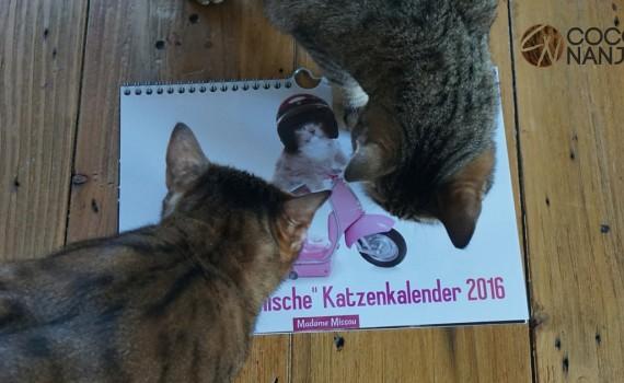 Coco und Nanju mit Katzenkalender 2016