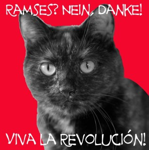 Brownie_revolucion