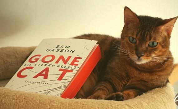 Gone_Cat_Buchbesprechung