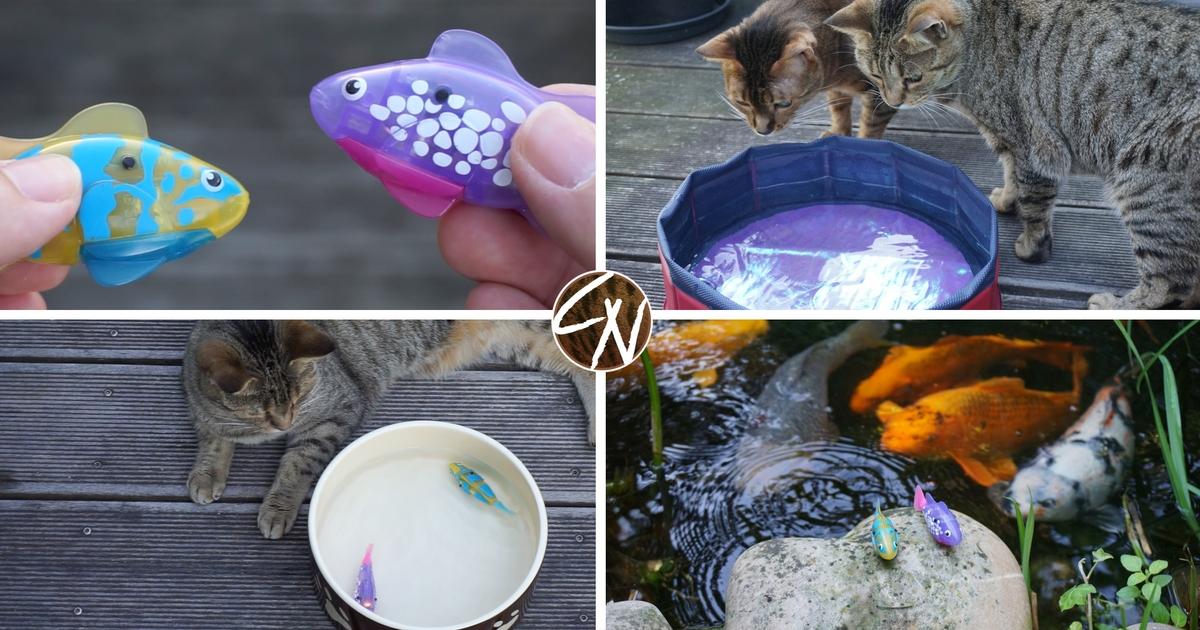 robofische-katzenspielzeug-2