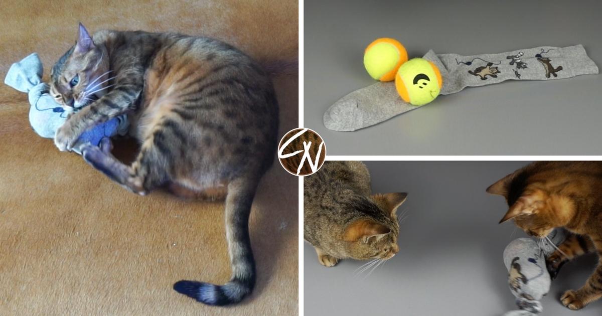 katze aus socken selber machen, diy katzenspielzeug aus socke - lifehack für katzen - coco und nanju, Design ideen
